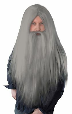 Wizard Gandalf Dumbledore Merlin Fancy Dress Costume Grey Long Wig and Beard Set