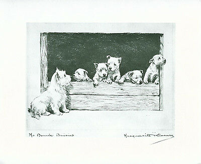 Dog Print West Highland White Terrier Dogs by Marguerite Kirmse