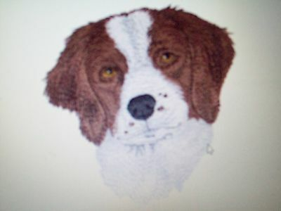 Brittany Spaniel Dog Breed SET OF 2 HAND TOWELS EMBROIDERED