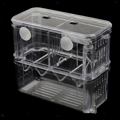 Tansparent Acrylic Aquarium Incubator Box Fish Breeding Isolation Hatching