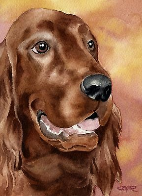 IRISH SETTER Watercolor Painting 8 x 10 Art Print Signed by Artist DJ Rogers