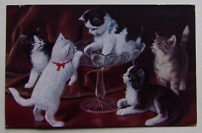 Fa588) Cpa Chats Chatons Cats Kitten - O.g.z.-L 169/1051