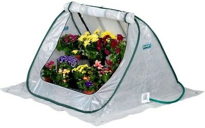 FLOWERHOUSE SeedHouse 4 ft x 4 ft Pop Up Greenhouse Plant Flower Grow Garden New