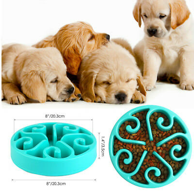 Pet Slow Feeder Dog Bowl Food Water Eating Drinking Fun Dish Feed for Dogs Cat