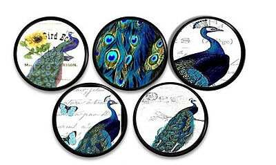 Blue and Green Peacock Dresser Knob Script Colorful Bird Cabinet Drawer Pull