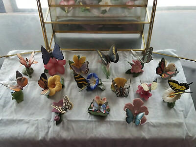 Procelain Bisque 'Butterflies of the World' by Franklin Mint (Exc. condition)