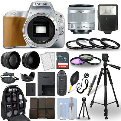 Canon EOS 200D SLR Camera Silver + 18-55mm STM Lens + 30 Piece Accessory Bundle