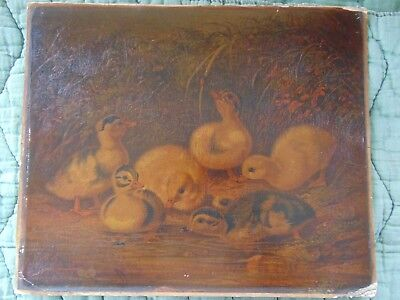 "Original 1866 Print ""DUCKLINGS "" Painted by A.F. Tait"