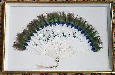 1920s Feather Fan Chinese Hand Fan with Peacock Feathers Mint Condition Framed