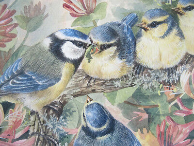 Valerie Briggs Blue Tit Bird Family Fledglings Wildlife Watercolor Painting yqz
