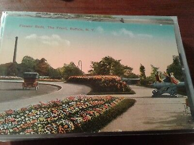 Vintage POSTCARD Flower Beds The Front Buffalo NY old cars