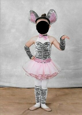 Elephant dance costume- used twice- fits around a 5T