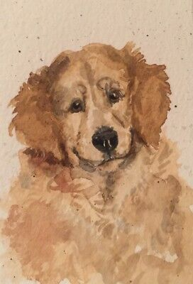 ACEO Golden retriever Dog Portrait. A Watercolor Original Art By NFISH