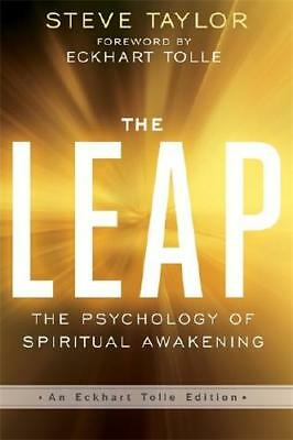 The Leap by Steve Taylor (author)