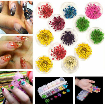 24Pcs 3D Dry Flower Nail Art Sticker Dried DIY Tips Acrylic Decoration Kit