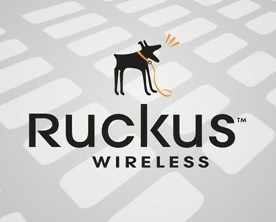 Ruckus Hk-Ad-120A100-Au 12V 1A Access Point Power Adapter