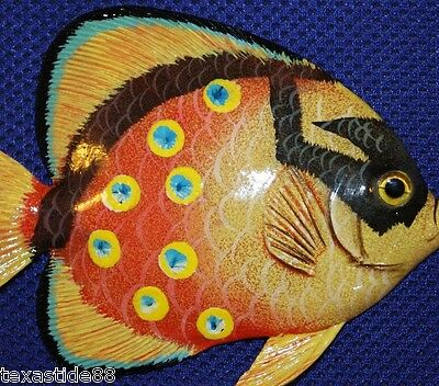 "(1) 6"", Tropical Fish Wall Decor, Wall Hanging, Exotic, Seafood Restaurant F-157"