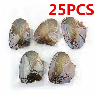 25pcs Individually Wrapped Oysters with Large Pearl Birthday Gift