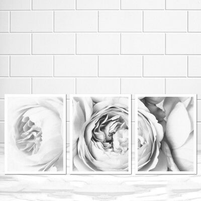 A3 A2 A1 A0 B1 Set of 3 Minimal Scandi Flower Home Decor Wall Art Poster Print