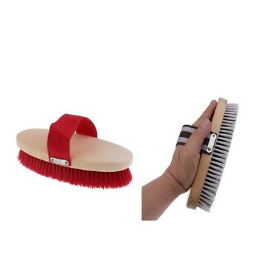 Horse Mane Tail Face Comb Finishing Brush Grooming Kit with Belt Handle