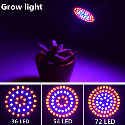 E27/GU10/MR16 36/54/72LED Full Spectrum LED Grow Light Bulb Hydroponic Garden