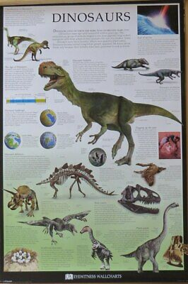 Dinosaurs-Dorling Kindersley Chart- Poster-Laminated available-91cm x 61cm-Br...