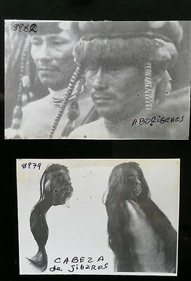 Vintage Original Jivaro Ashuar Tribe   Indians Forrest Peru Photo Srunken Head