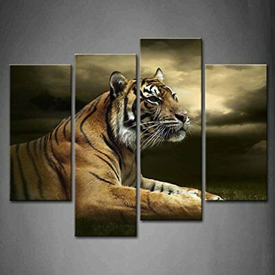 Framed Tiger Wall Art Painting Office Pictures Canvas Print The Animal Picture