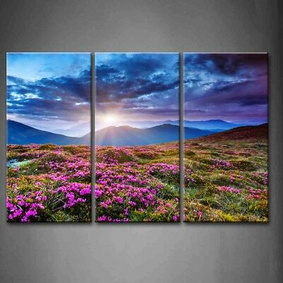 Framed Sunset Wall Art Painting Flowers Picture Canvas Print Scenery Pictures