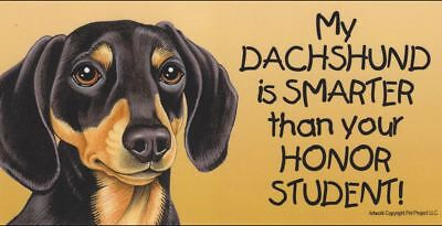 My Dachshund is Smarter Than Your Honor Student Magnet 4x8 refrigerator car dog