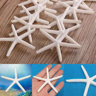 12Pcs 2''-4'' Beautiful White Finger Starfish Beach Wedding Craft Decor Toy Gift