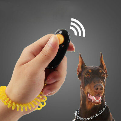 Dog Pet Click Clicker Training Trainer Aid Wrist Strap Agility Obedience Trainer