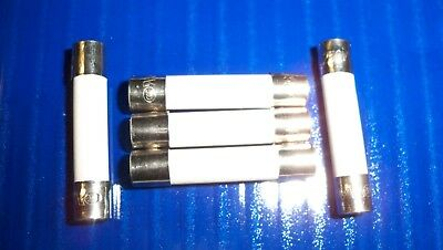 "5 Microwave Ceramic Fuses Fast Blow 20 Amp 250 V  6x30mm  (1/4 "" X  1-1/4 "")"