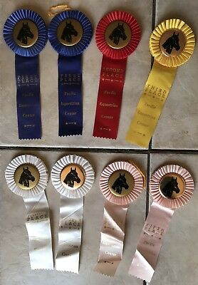 Lot of 8 Vintage 1980s Riding Horse Show Ribbons Oregon Pacific Equestrian OR