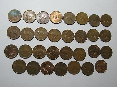 Lot of 31 Bermuda 1 Cent Pig Coins - 1970s to 1990s - Circulated