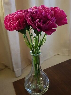 Table top artificial flower display vase cafe restaurant pink red Carnation NEW