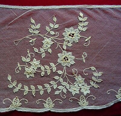 Antique Embroidered / Lace Applique Tulle Net Lace Trim Edging
