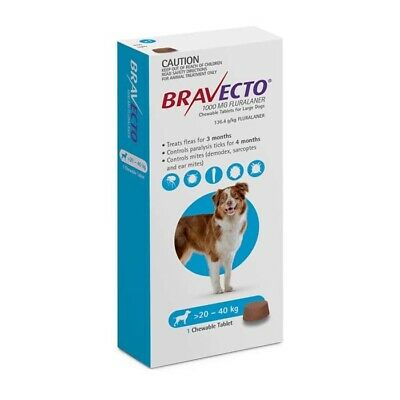 Bravecto Flea Tick Treatment Chew Large Dog 20 - 40 KG