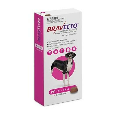Bravecto Flea Tick Treatment Chew Extra Large Dog 40 - 56 KG
