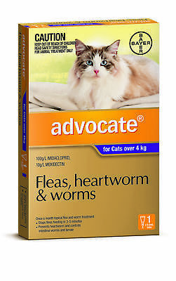 NEW Advocate Purple For Large Cat - 1Pack