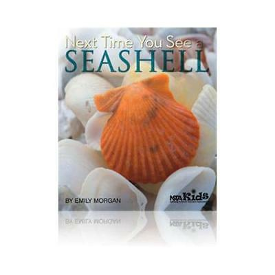 Next Time You See a Seashell by Emily Morgan (author)