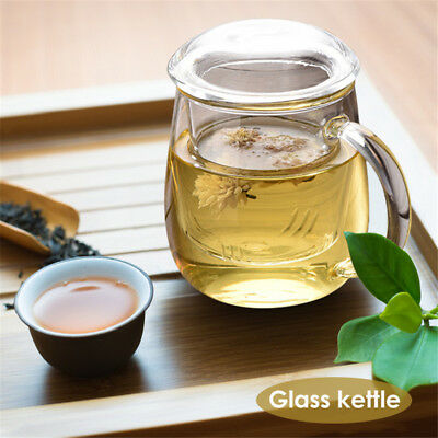 500ml Heat Resistant Clear Glass Teapot Infuser Drinking Cup With Filter Cap