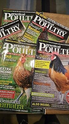 practical poultry magazines x10 chickens bantams hens