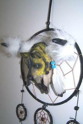 auction LARGE POLY RESIN WOLF head COW BULL SKULL DREAM CATCHER feathers wolves