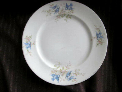 Antique BLUEBIRDS Dinner Plate Knowles Taylor & Knowles KT&K~early 1900s