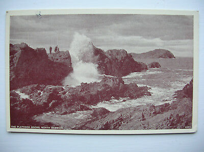 North Berwick – Platcock Rocks. (1956 – Best of All – J B White Ltd)