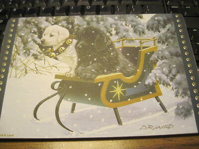 Cute Xmas Winter Scene of Newfoundland Puppy in a Sled Corkboard by D.R. Laird