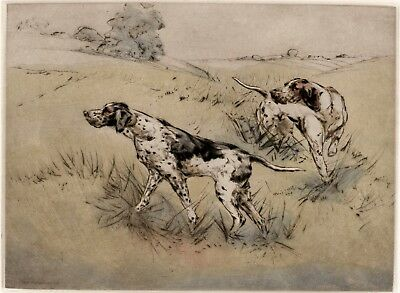 POINTER ENGLISH DOG LIMITED EDITION PRINT Dry-Point ENGRAVING by Henry Wilkinson