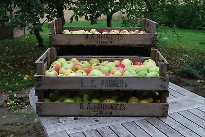 3 vintage rustic wooden apple crates boxes trays