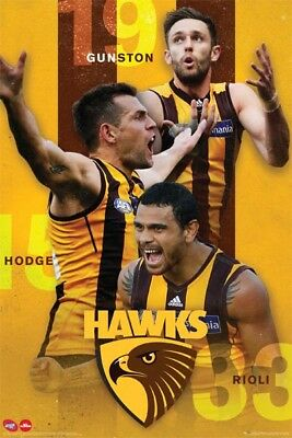 Afl Hawks POSTER (61x91cm) Picture Print New Art